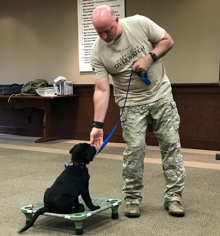SERVICE DOG Training - Operation Overwatch TX