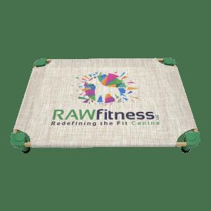 zz LOGO Raw Fitness - resize